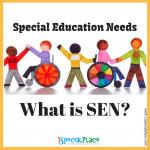 What is SEN?
